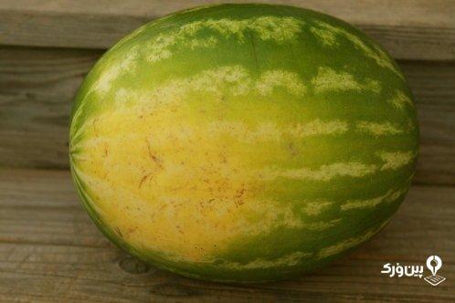 تشخیص هندوانه خوب قرمز و آبدار از روی ظاهر