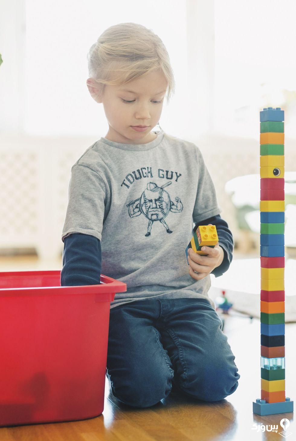 مخلوط کردن اسباب بازیهای خانه سازی