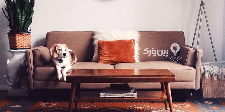 دور کردن حیوان خانگی از وسایل خانه و مبلمان