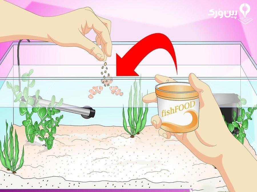 جلوگیری از تشکیل رسوبات بر روی شیشه آکواریوم به وسیله میزان غذای مناسب