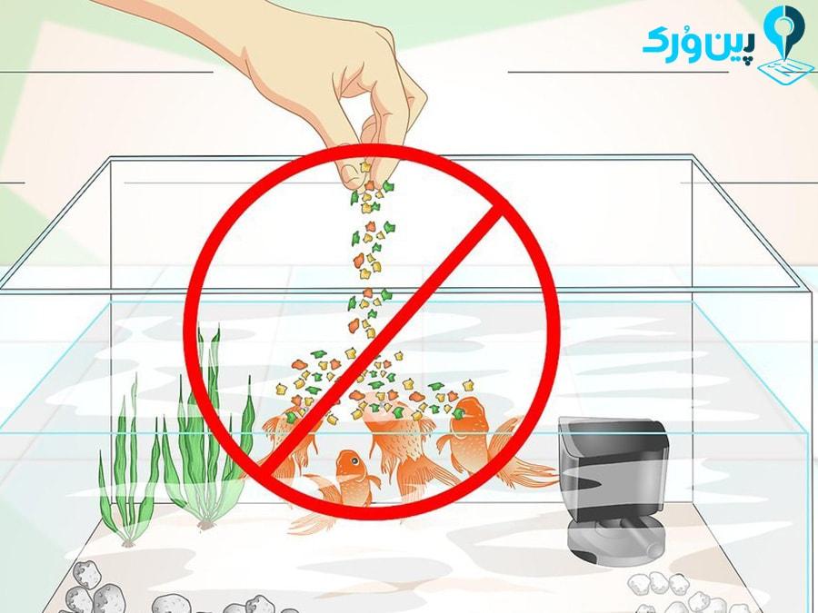 ممانعت از غذای زیاد به ماهی