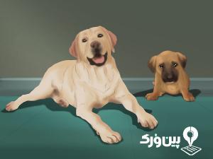 رژیم سگ