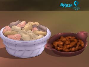 غذای آماده برای سگ ها