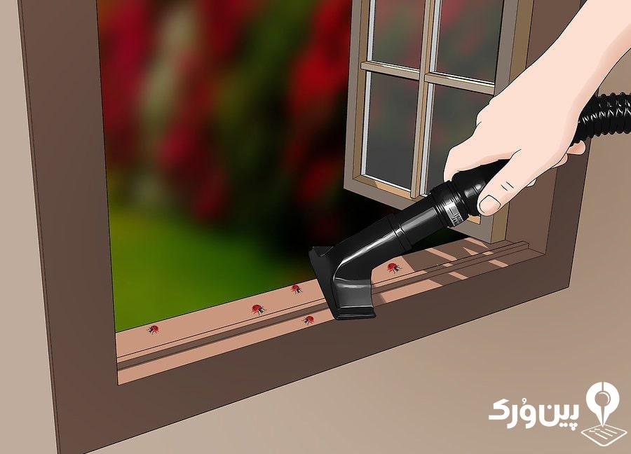 نحوه از بین بردن حشرات خانگی با جارو برقی