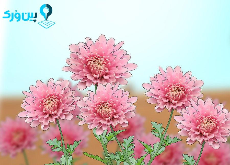 جلوگیری از ورود حشرات بَا استفاده از کاشت گل