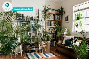 کود دهی گیاهان آپارتمانی