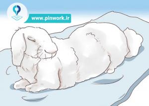 شناخت و درمان بیماری خرگوش