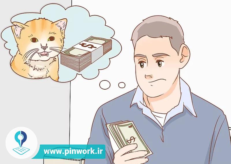 مراقبت گربه